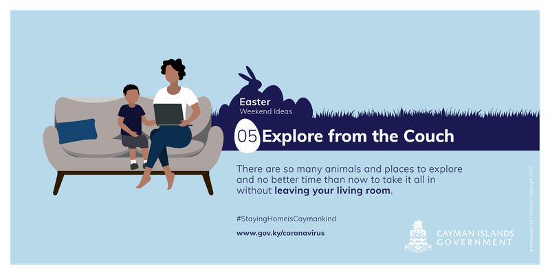 Learn about animals and places to explore from the comfort of your couch