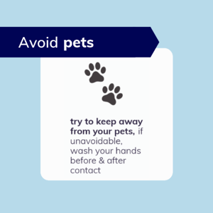 Avoid pets during self-isolation from COVID-19
